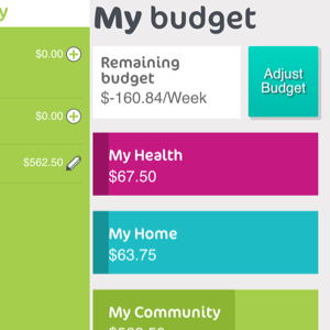 Custom Rails App helping people to budget for their HomeCare needs.